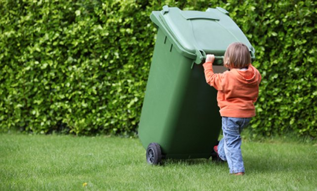 Summer Weekly Green Bin Pick-Up